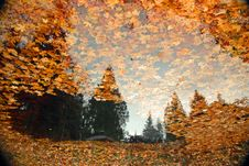 Reflections Of Fall Royalty Free Stock Image
