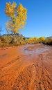 Free Desert Stream In Fall Stock Images - 16901774