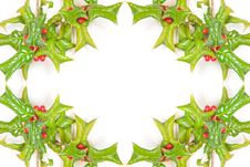 Free Christmas Green Framework With Studio Shot Stock Images - 16900544
