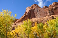 Free Poison Spider Mesa In The Fall Stock Images - 16901504