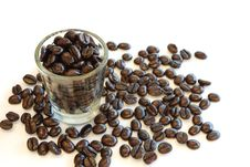 Free Coffee Seed Royalty Free Stock Photography - 16901697