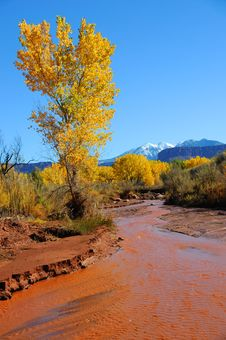 Free Desert Stream In Fall Royalty Free Stock Image - 16901756