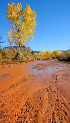 Free Desert Stream In Fall Stock Images - 16901774
