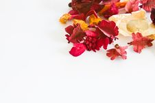 Free Potpourri In Upper Right Corner Royalty Free Stock Images - 16901959