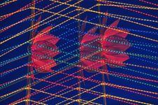 Free Lotus Lantern Display Stock Photography - 16902112