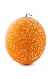 Free Orange Melon Stock Photos - 16903823