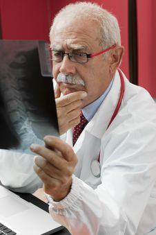 Free Doctor Examining X-ray Stock Photo - 16904910