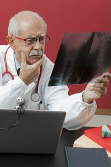Free Doctor Examining X-ray Royalty Free Stock Photography - 16905327