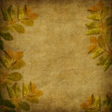 Free Card For The Holiday  With Autumn Leaves Royalty Free Stock Image - 16905406