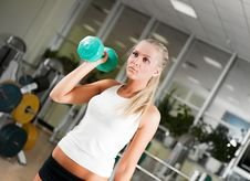 Young Women Lifting Free Weights Stock Photo