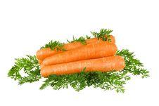 Free Carrots Royalty Free Stock Photos - 16907158
