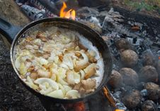 Free Yummy Barbecue With Lard, Onion And Potatoes Stock Photos - 16907283