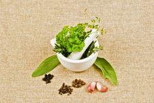 Free Herbs Royalty Free Stock Photo - 16907345