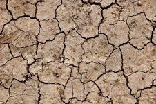 Free Dry Soil Stock Photos - 16909363