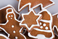 Free Gingerbread Cookies Stock Photography - 16910502