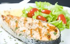 Free Grilled Salmon Royalty Free Stock Image - 16910056