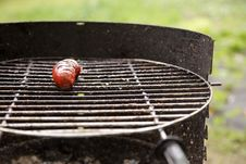 Free Sausages On The Barbecue Grill Stock Images - 16911104