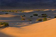 Free Morning Dunes Stock Image - 16911251