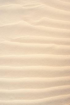 Free Sand Pattern Stock Images - 16912024