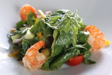 Free Salad With Shrimps Royalty Free Stock Photography - 16914307
