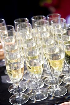Free Party Set Of Champagne Flutes In A Tray Royalty Free Stock Photos - 16915158