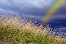 Free Rainbow Royalty Free Stock Photography - 16915187