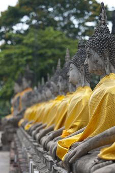 Free Aligned Statues Of Buddha Royalty Free Stock Photography - 16916187