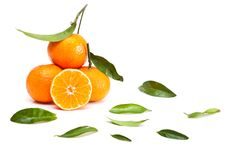 Free Tangerines Royalty Free Stock Photography - 16918307