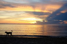 Free Pranburi Beach Sunraise Stock Photo - 16918910