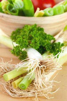 Free Spring Onions Stock Image - 16919081