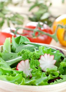 Free Fresh Salad Stock Photography - 16919502
