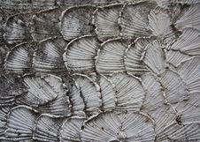 Free Detail Of Cement Wall Royalty Free Stock Image - 16923726