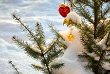 Free Christmas-tree Decorations On Pine Stock Image - 16925811