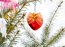 Free Christmas-tree Decoration Royalty Free Stock Photography - 16925977