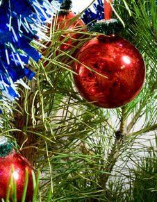 Free Christmas-tree Decorations Stock Images - 16926074