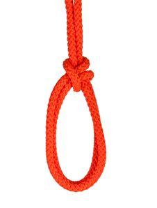 Free Noose Isolated On White Stock Image - 16927581