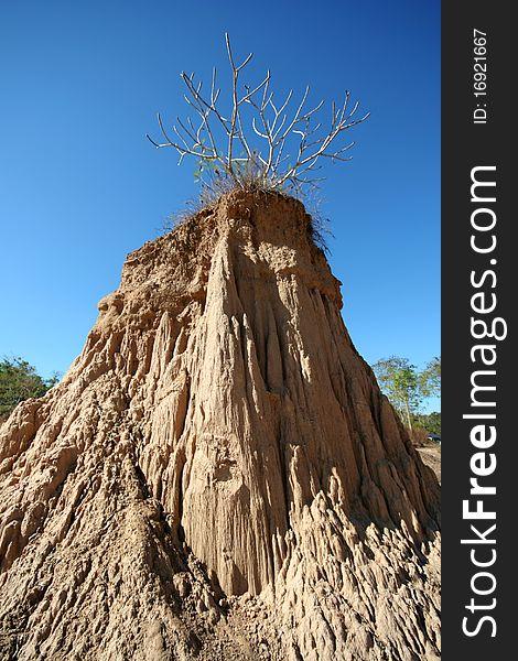 The pillar of the soil