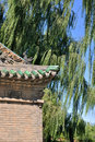 Free Part Of Chinese Temple Building And Willow Tree Royalty Free Stock Photography - 16932407