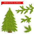 Free Collection Of Tree Elements. Vector Stock Photography - 16935642