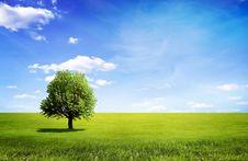 Free Landscape Stock Photos - 16930193