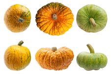 Colourful Pumpkins Isolated On White Background. Stock Image