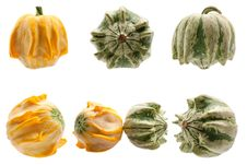 Colourful Pumpkins Isolated On White Background. Stock Photo