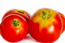 Free Tomatoes Stock Photos - 16933153