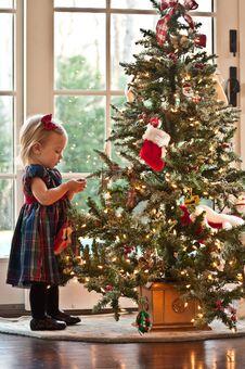 Free Waiting For Santa Stock Photos - 16933693