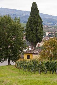 Free Chianti Landscape Stock Image - 16934691