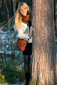 Free Blonde Peers Out For Stem Tree In Autumn Wood Royalty Free Stock Photo - 16934905