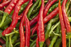 Free Hot Chilli Peppers. Stock Photos - 16936693
