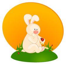 Little Toy Bunny With Ladybird Stock Photo