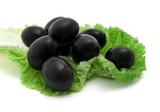 Free Black Olives And Lettuce Royalty Free Stock Images - 16943149