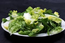 Free Lettuce Royalty Free Stock Photography - 16946617